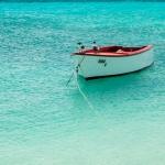 Kisha bird boat