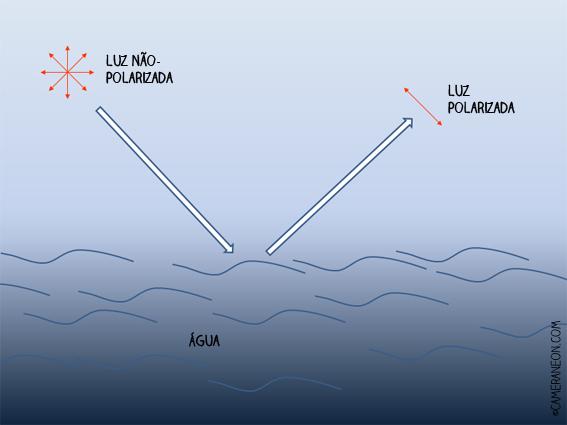 Filtro polarizador; como funciona; fotografia; Luz polarizada; Reflexo polarizado