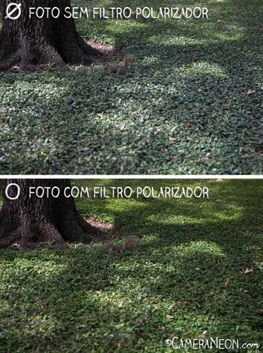 Filtro polarizador; fotografia; acessórios para fotografia; Esquilo