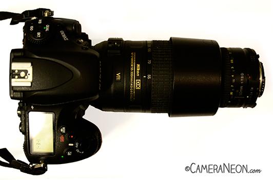 Macrofotografia; macro; macrophotography; anel de acoplamento;