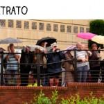 chuva, grade, grupo, guarda-chuva, diferença entre fotografia e retrato, diferenças entre fotografia e retrato, fotografia, retrato