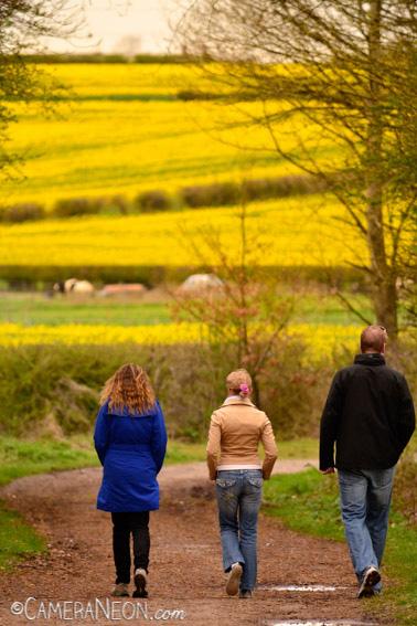 amarelo, andando, caminho, campo, homem, Inglaterra, mulher, trio
