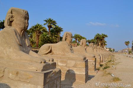 distância hiperfocal; f/stop; círculo de confusão; distância focal; paisagem; paisagens; Egito; Egypt; esfinge; Avenida das Esfinges; esfinges; Avenue of Sphinxes; Sphinx Avenue; Luxor;
