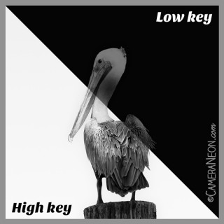 low key, high key, fotografia