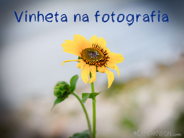 Vinheta na fotografia