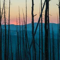 Dicas de fotografia: Parque Nacional de Yellowstone
