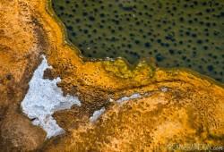 dicas-fotografia-Parque-Nacional-de-Yellowstone-13-