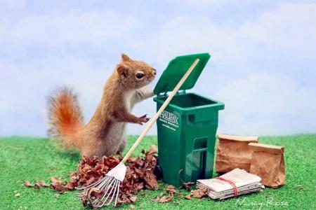 The-Secret-Life-of-Squirrels-(4-)