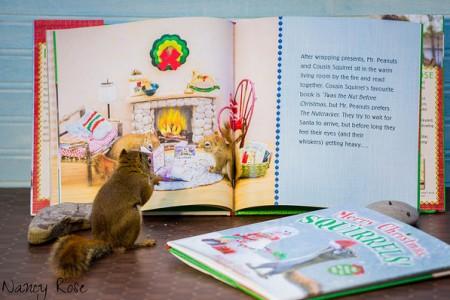 The-Secret-Life-of-Squirrels-(6-)