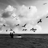 An Island, por Mariana Moraes